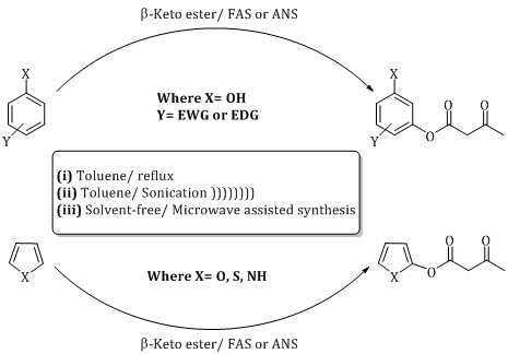 Transition metals as efficient catalysts for transesterification of Beta keto Esters under Solvent-free conditions